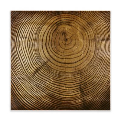 Awesome INK+IVY Wood Grain Metallic Canvas Wall Art In Bronze