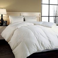 Year-Round Twin Down Comforter