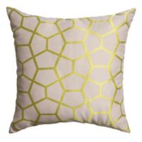 Tencel 18-Inch Square Throw Pillow in Apple Green