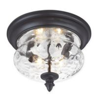 Minka Lavery® Ardmore™ 2-Light Outdoor Flush Mount in Black