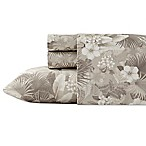 Tommy Bahama® Hibiscus Haven King Sheet Set in Grey