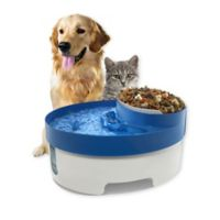 OxGord® 3-in-1 Pet Water Fountain in Blue/White