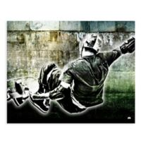 GreenBox Art™ 18-Inch x 24-Inch Skater Wall Art
