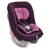 Combi® Coccoro Convertible Car Seat in Grape