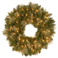 National Tree 2-Foot Carolina Pine Pre-Lit Artificial Wreath with Clear Lights