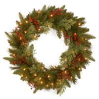 National Tree Classical Collection 24-Inch Wreath with White LED Lights
