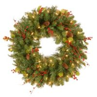 National Tree Classical Collection 24-Inch Wreath with Clear Lights