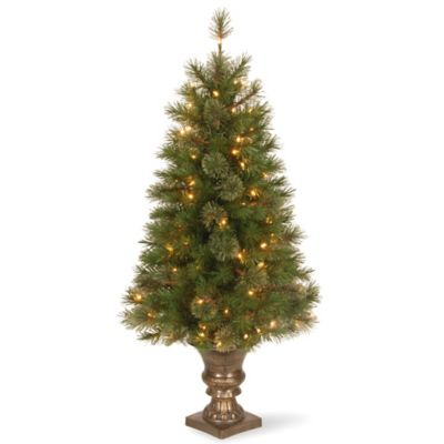 Wonderful National Tree 4 Foot Atlanta Spruce Pre Lit Entrance Christmas Tree With  Clear Lights