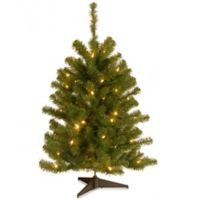 National Tree 3-Foot Eastern Spruce Christmas Tree with Clear Lights