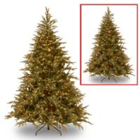 National Tree 6-Foot Frasier Grande Pre-Lit Christmas Tree with Color-Changing Lights
