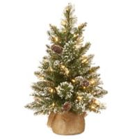 National Tree Company 2-Foot Glittery Bristle Pine Pre-Lit Tree with Warm White Lights