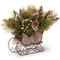 National Tree Company 10-Inch Glittery Bristle Pine Sleigh