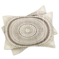 DENY Designs Iveta Abolina Winter Wheat Standard Pillow Shams in Grey (Set of 2)