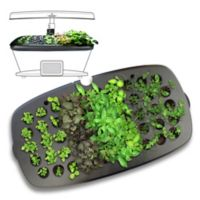 Miracle-Gro® AeroGarden® Bounty Seed Starting System