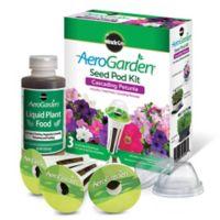 AeroGarden® Cascading Petunias Seeds 3-Pod Kit