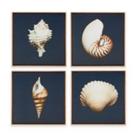 Madison Park Ocean Seashells 4-Piece Framed Canvas Wall Art