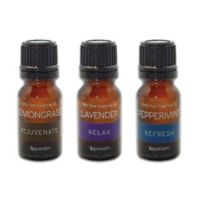 SpaRoom® Everyday Sensory 3-Pack Essential Oils