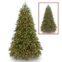 National Tree Company 7.5-Foot Jersey Fraser Medium Fir Tree with Changing LED Lights