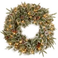 National Tree Company 24-Inch Liberty Pine Pre-Lit Wreath with Clear Lights