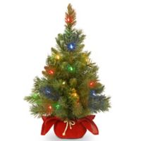 National Tree Company 2-Foot Majestic Fir Christmas Tree with Battery-Operated Multicolor LED Lights