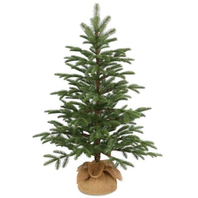 national tree company 3 foot norwegian spruce seedling tree - Real Christmas Tree Prices