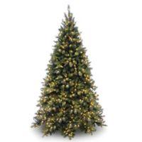 National Tree 7-Foot 6-Inch Tiffany Fir Medium Christmas Tree with Clear Lights