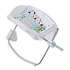 Fisher-Price® Newborn Auto Rock 'n Play™ Sleeper