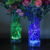 LED Submersible Lights with Remote Control (Set of 2)