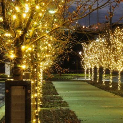 Outdoor String Lights Bed Bath And Beyond : Buy Outdoor String Lighting from Bed Bath & Beyond