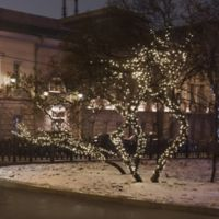 17-Foot 50-Light LED Solar Powered String Lights in White