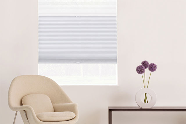 Day Night Cellular Shades