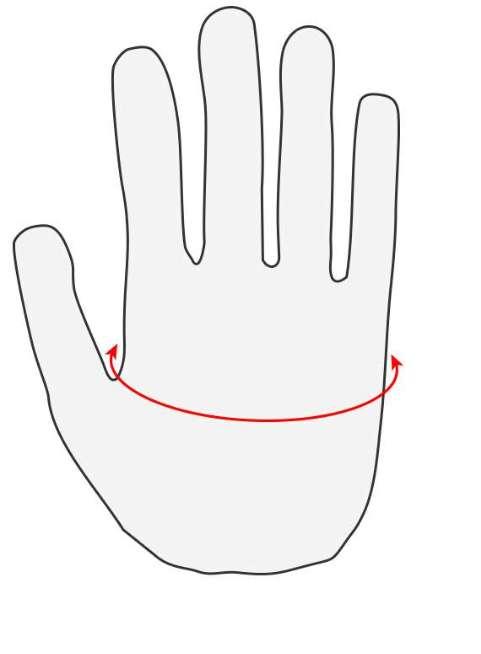 measurement gloves