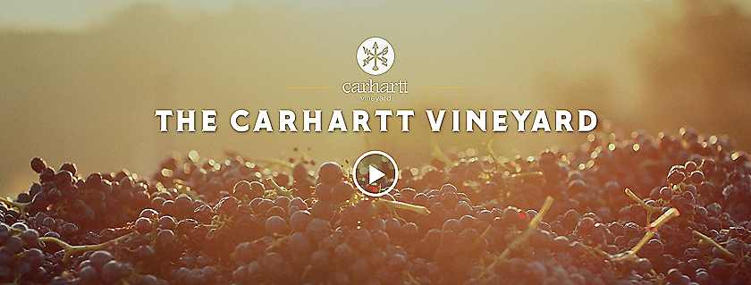 The Carhartt Vineyard