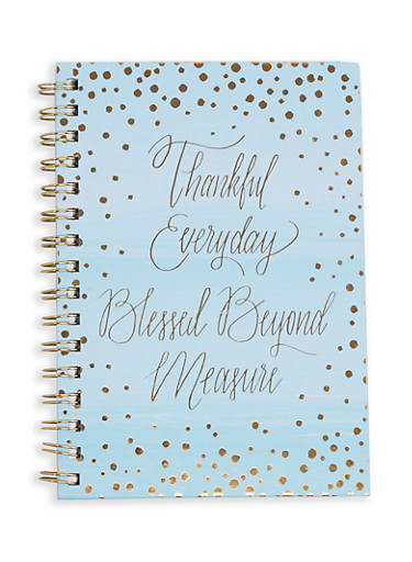Thankful Everyday Blessed Beyond Measure Notebook,BLUE,large
