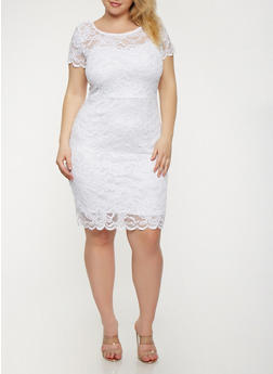 Plus Size Lace Bodycon Dress - 0390054267100