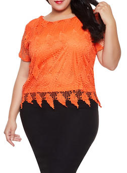 Plus Size Crochet Top - 8428064461073