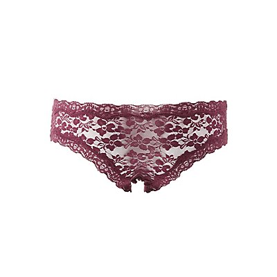 Sheer Lace Hipster Panties