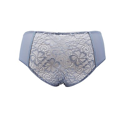 Plus Size Lace & Mesh Hipster Panties