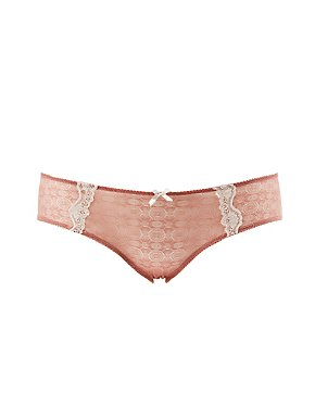 Plus Size Sheer Mesh & Lace Hipster Panties