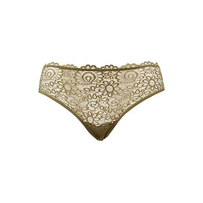 Plus Size Lace-Front Hipster Panties