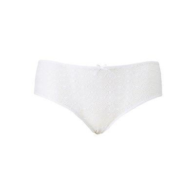 Plus Size Caged Lace Cheeky Panties