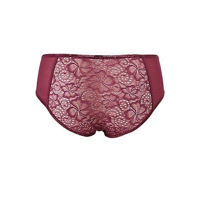 Plus Size Lace & Mesh Hipster Panties