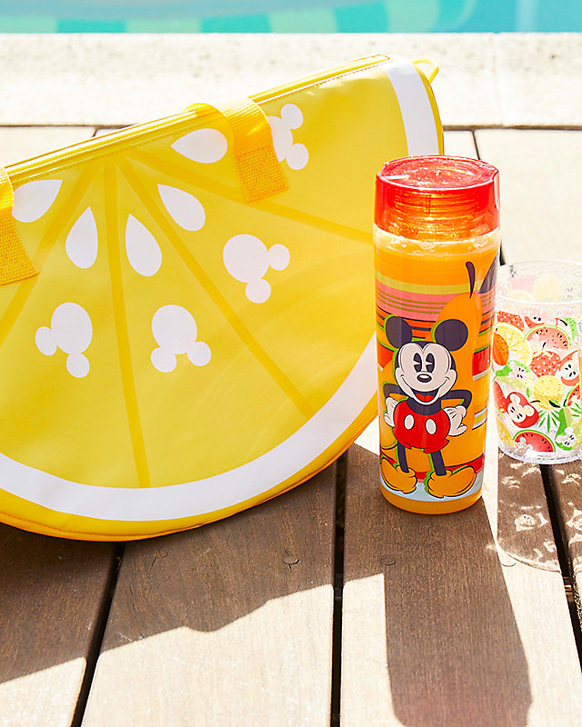 Mickey's Summer Fun