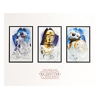 Disneyland Paris Star Wars Droids Poster