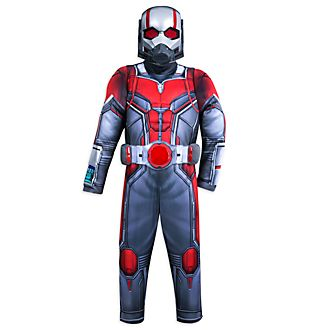 Disfraz infantil Ant Man