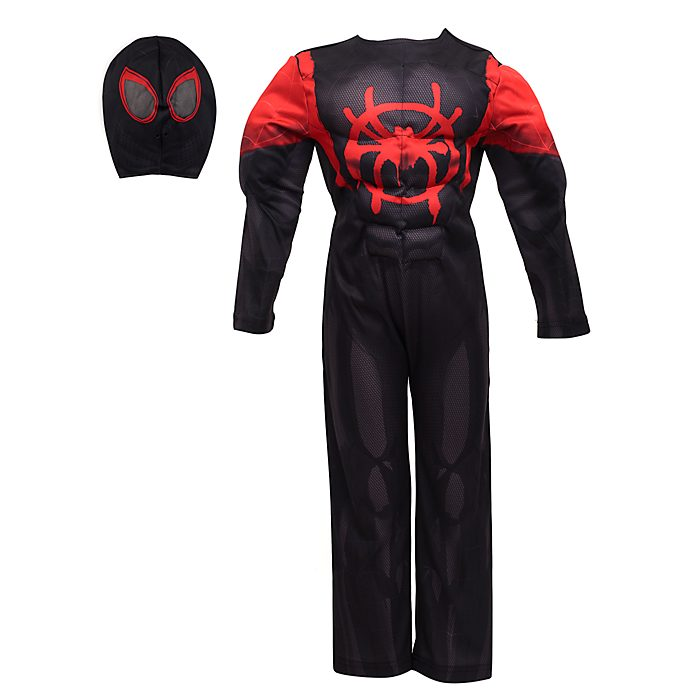 Spider Man Into The Spider Verse Costume For Kids