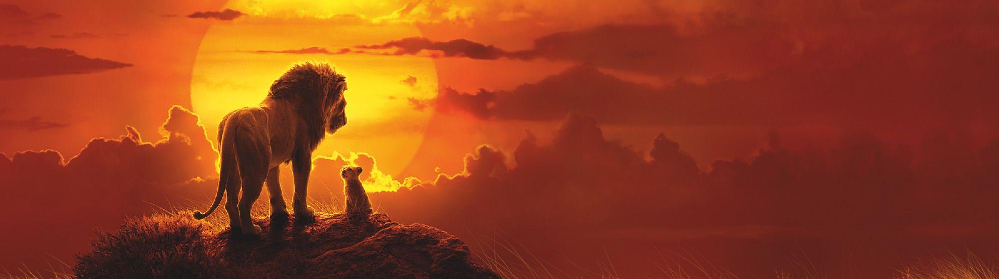 Dans la savane, Simba, le Roi Lion veille sur les animaux sauvages et protège son territoire avec Timon, Pumbaa ou encore Nala.