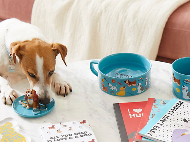 Paws-itively Perfect Embark on exciting adventures with our Oh My Disney Collection SHOP NOW