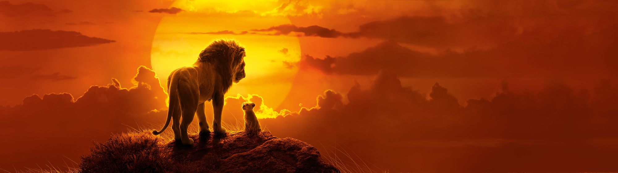 Explore our The Lion King range including soft toys, playsets, homeware, collectibles and more