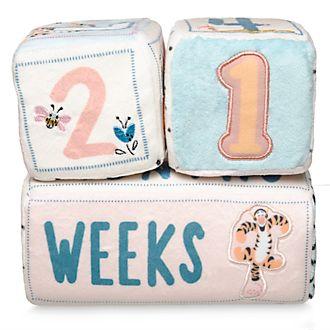 Disney Store Winnie the Pooh Baby Milestone Soft Blocks